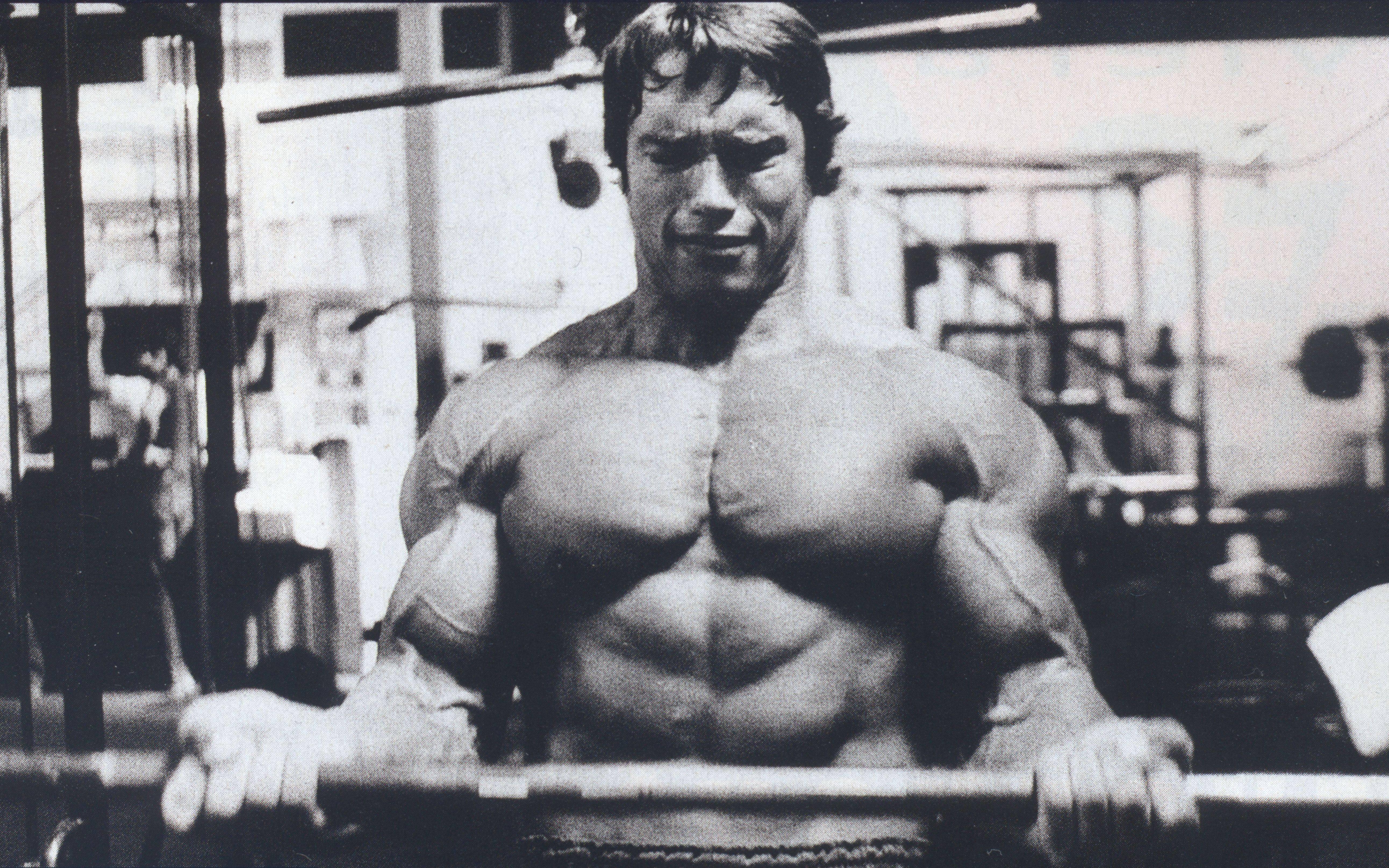 Arnold Motivational Quotes Wallpaper Quotesgram