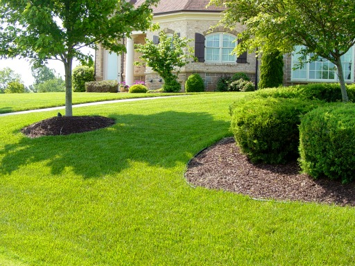 Beautiful Lawns Quotes Quotesgram