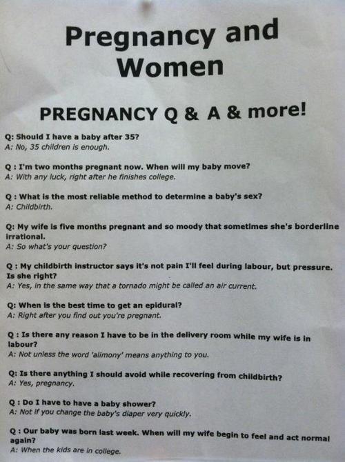 Pregnant girl sucking dick