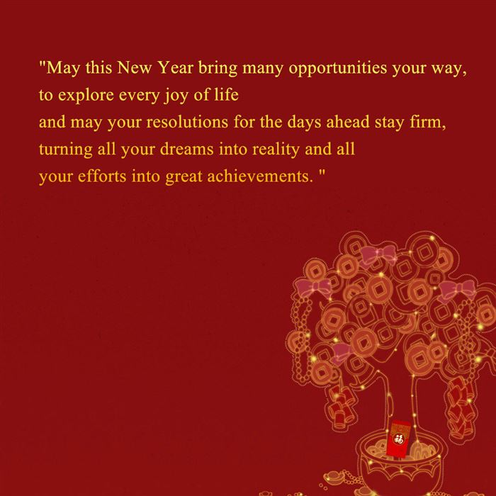 Quotes Chinese New Year Wishes: Chinese New Year Greetings Quotes 2015. QuotesGram