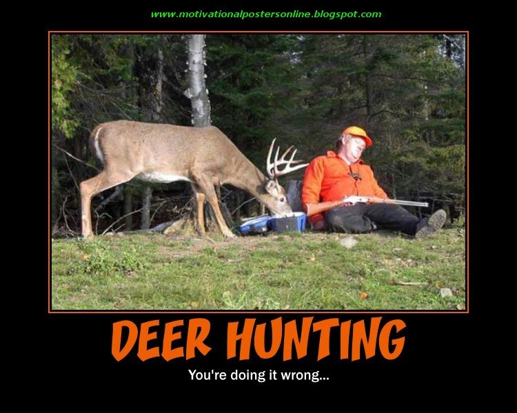 Safe Hunting Funny Quotes. QuotesGram