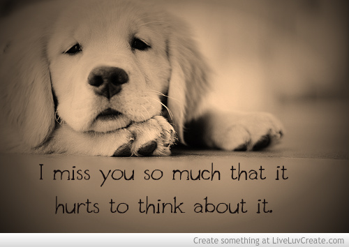 I Miss You So Much It Hurts Quotes