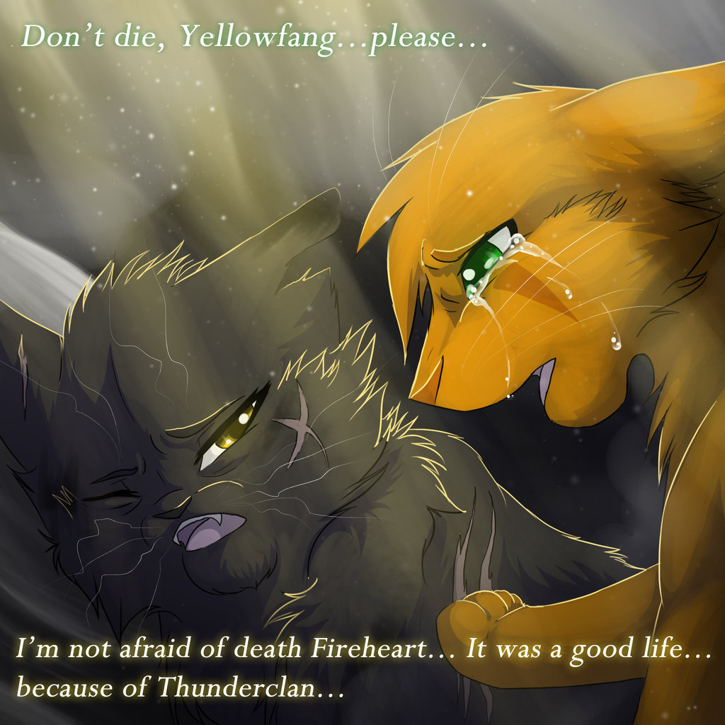 Warrior Movie Fight Scene: Warrior Cats Yellowfang Quotes. QuotesGram