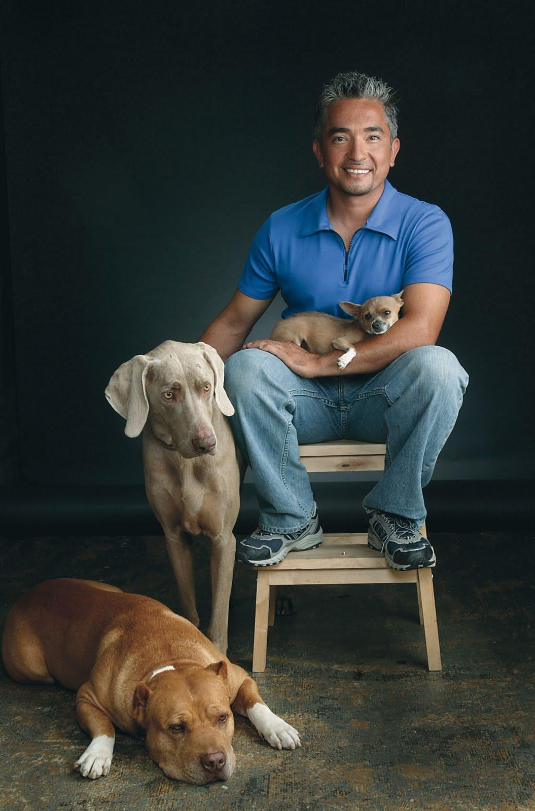 caring dog cesar millan quotes quotesgram. Black Bedroom Furniture Sets. Home Design Ideas