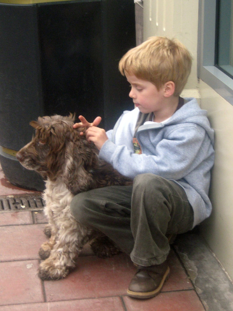 Boy And His Dog Quotes Quotesgram