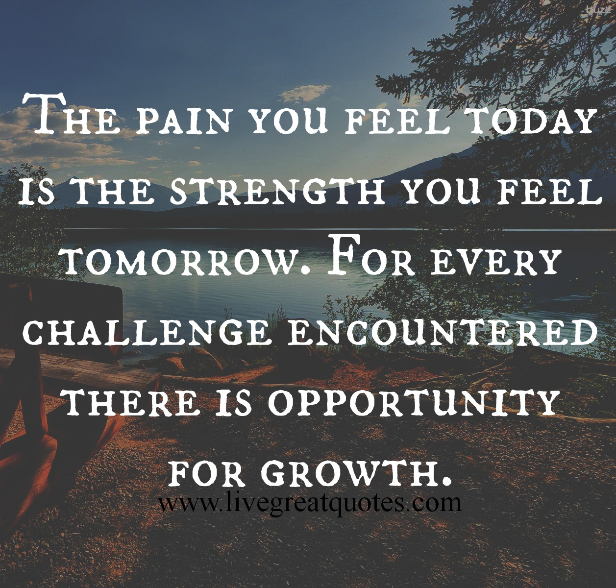 pain quotes and sayings - photo #15
