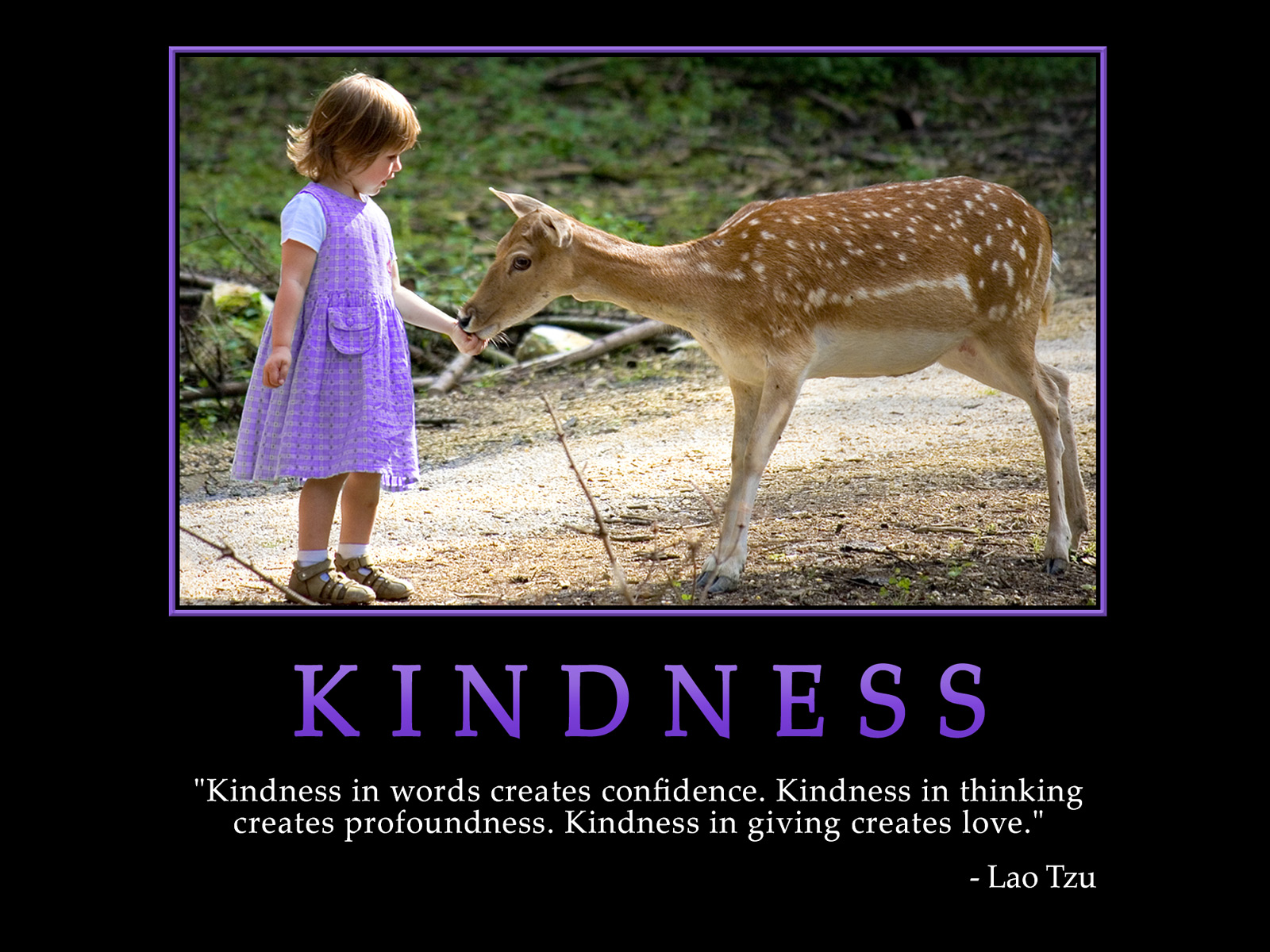 Kindness Quotes: Kindness Quotes For Work. QuotesGram