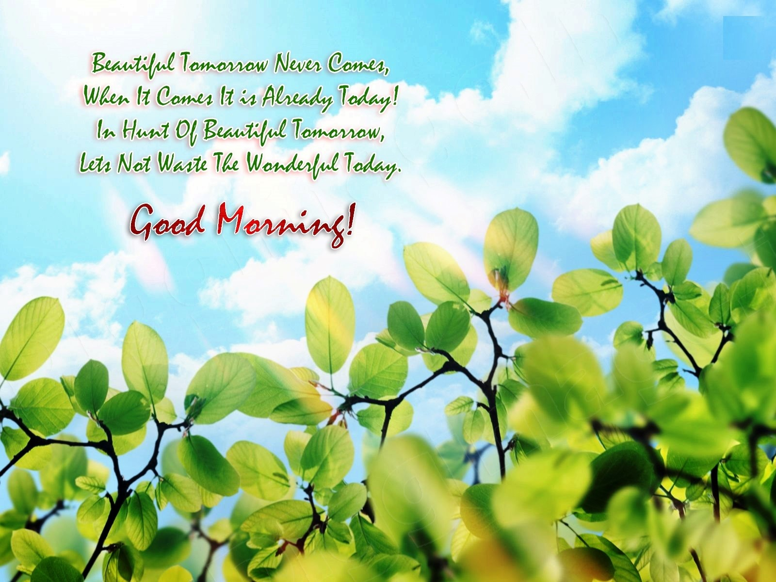 Good Morning Quotes For Him Quotesgram: Good Morning Hand Some Quotes. QuotesGram