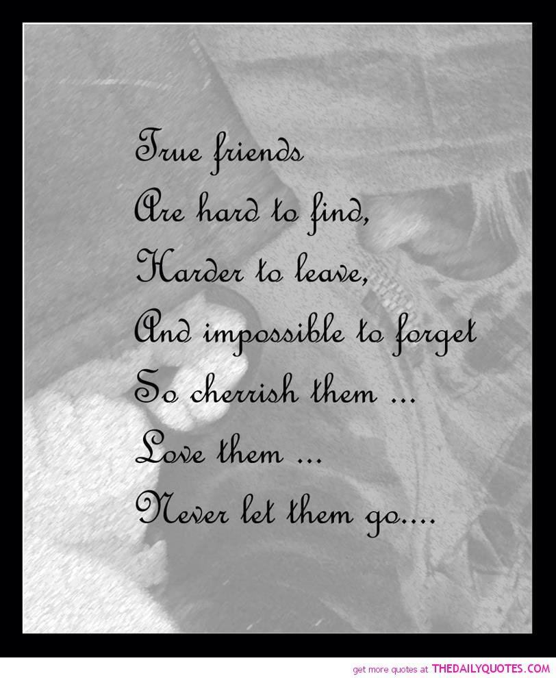Friendships Quotes And Sayings: True Friend Quotes And Sayings. QuotesGram
