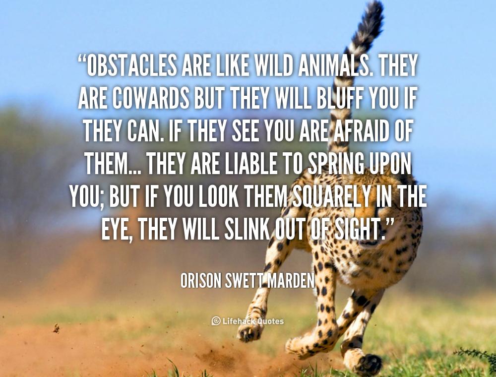 Wild At Heart Quotes Quotesgram: Wild Animals Quotes. QuotesGram