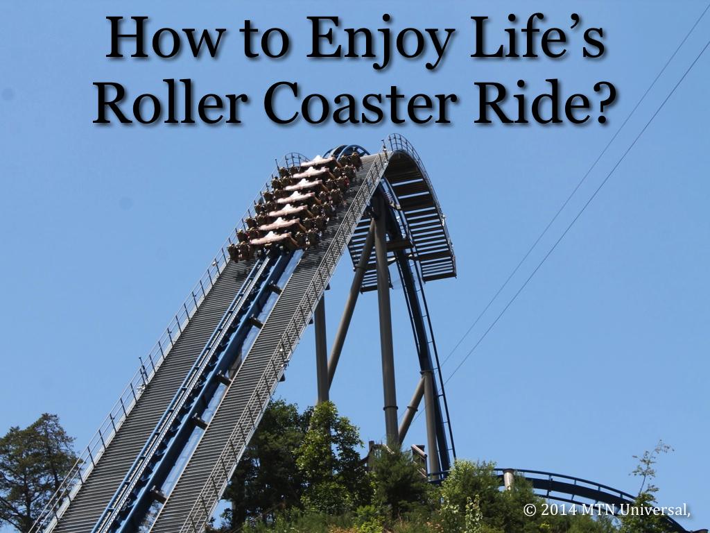 Roller Coaster Ride Quotes. QuotesGram