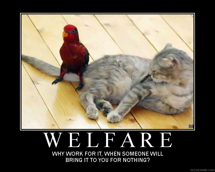 People On Welfare Funny Quotes About Supporting Quotesgram