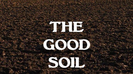 Famous quotes about building soil quotesgram for What do you mean by soil
