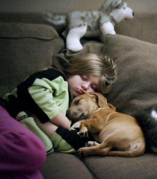 Baby Sleep Dog Bark