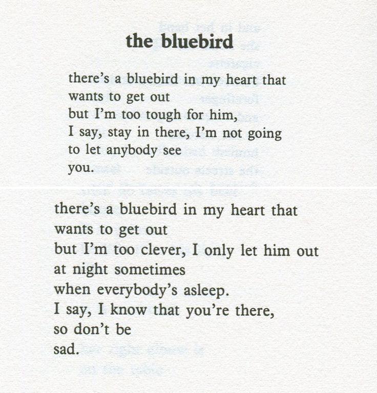 Quotes About Bluebirds. QuotesGram