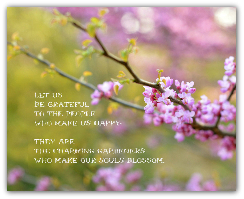 Inspirational springtime quotes Spring Quotes:
