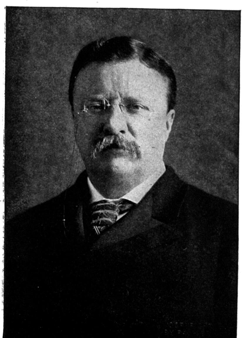 teddy roosevelt environment Was theodore roosevelt an environmentalist theodore roosevelt,  environmental activist and conservationist, wasn't just a president and.