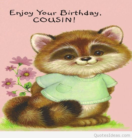 Funny Birthday Quotes For Cousins. QuotesGram