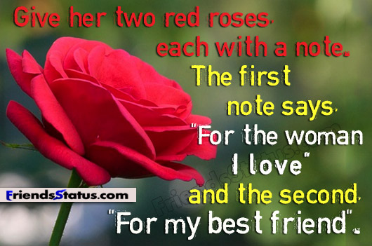 red roses and friendship quotes quotesgram