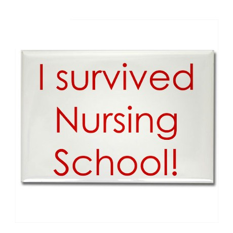 Nursing Graduate School Personal Statement Writing