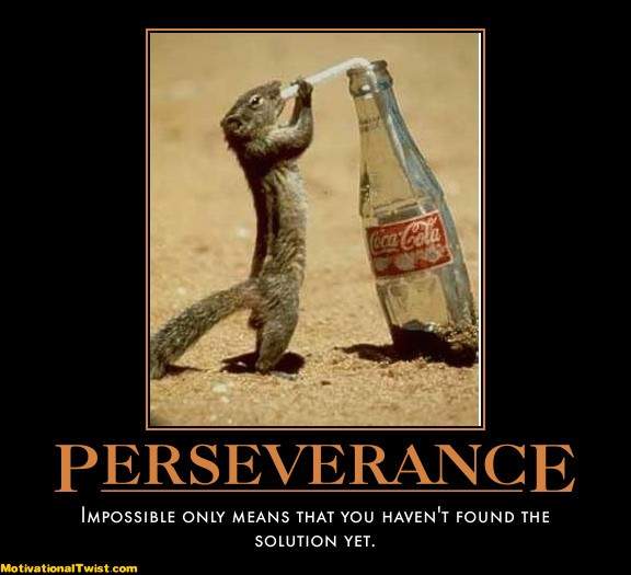 Persistence Motivational Quotes: Perseverance Quotes Humor. QuotesGram