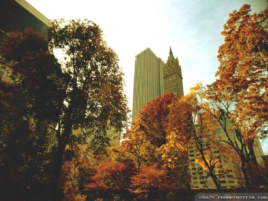 autumn in new york - photo #22