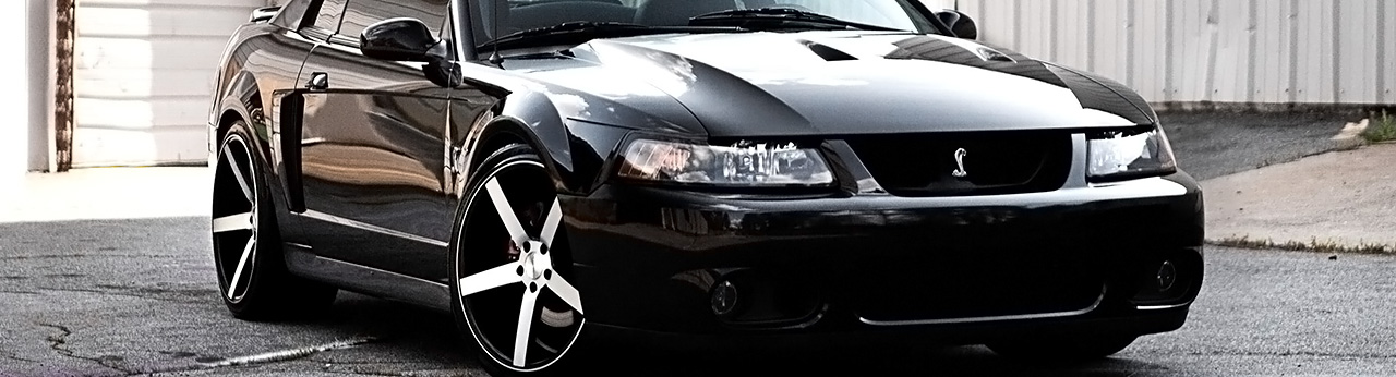 mustang part quotes quotesgram mustang part quotes quotesgram