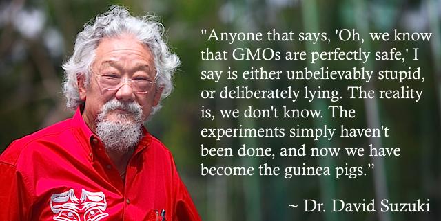 Gmo Quotes David Suzuki