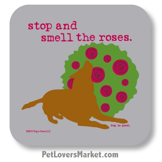 Take Time To Smell The Roses Quote: Stop And Smell The Roses Quotes. QuotesGram