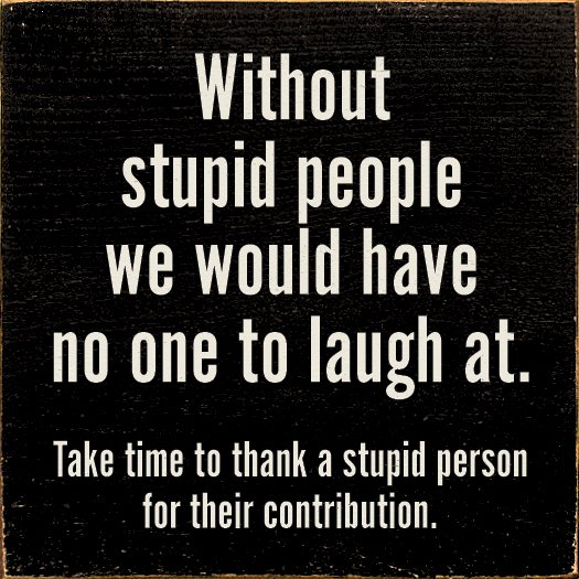 laughing at stupid people quotes quotesgram