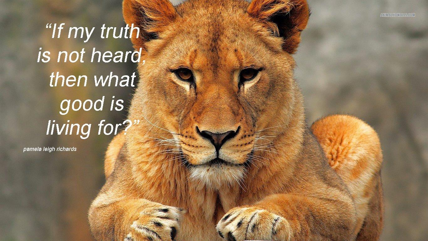 Quotes About Lionesses. QuotesGram