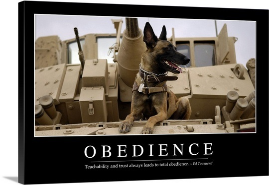 Inspirational Quotes About Obedience. QuotesGram