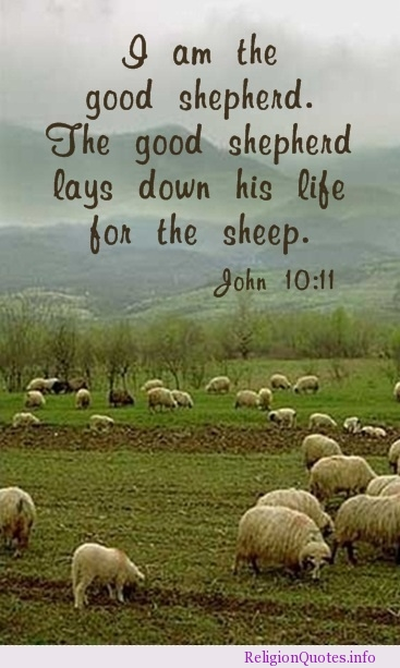 Quotes On The Good Shepherd Quotesgram