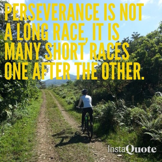 Persistence Motivational Quotes: Perseverance Sports Quotes. QuotesGram
