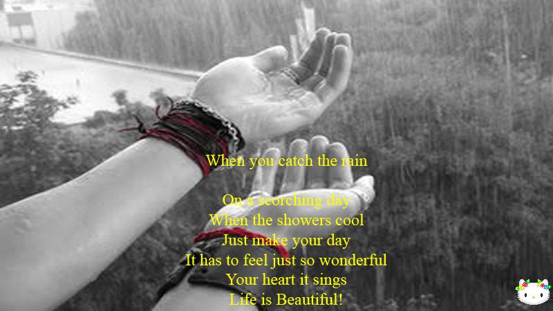 rainy day quotes funny animals quotesgram