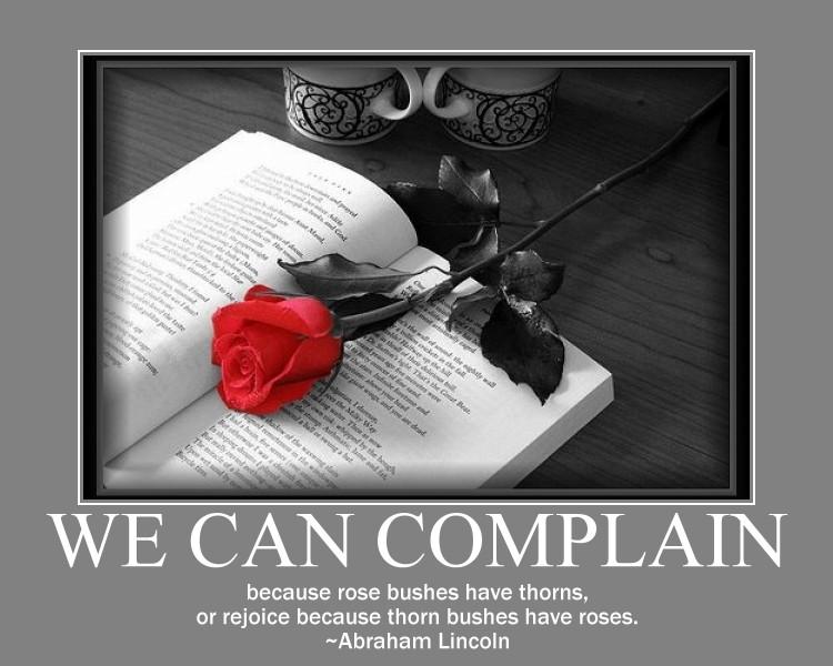 rose thorn quotes quotesgram