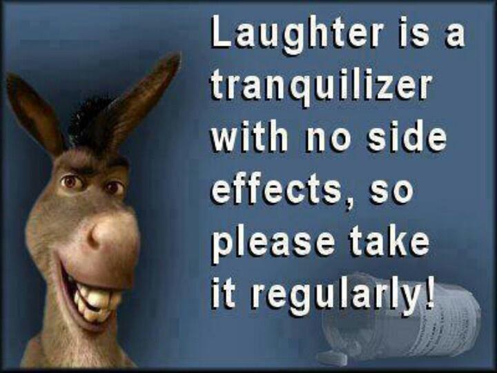 Funny donkey quotes hindi - photo#48