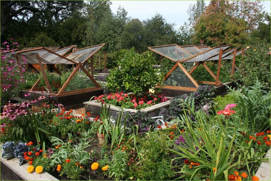 Уютный огород своими руками фото