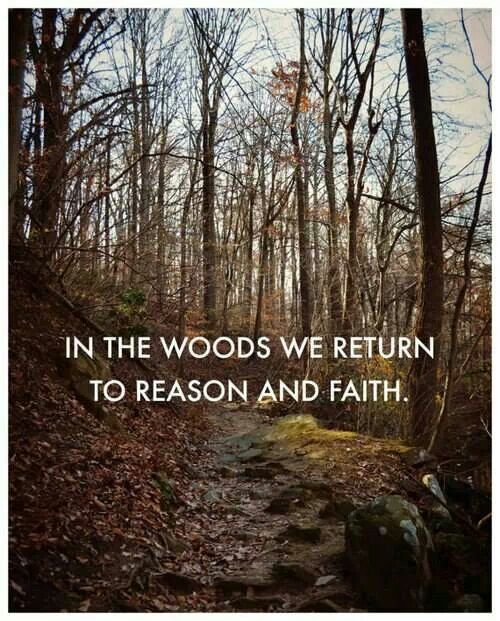 Woods Quotes: Hunting Woods Quotes. QuotesGram