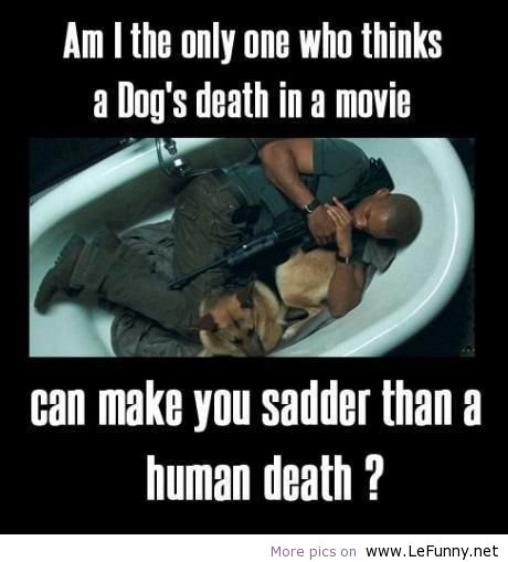 Dog Death Quotes: Dog Death Quotes. QuotesGram