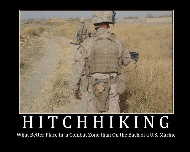 Funny Marine Corps Quotes. QuotesGram
