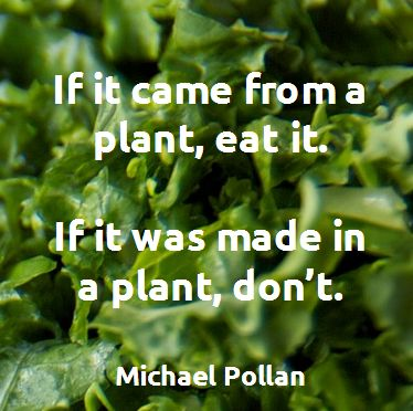 michael pollan food paper Eating doesn't have to be so complicated in this age of ever-more elaborate diets and conflicting health advice, food rules brings welcome simplicity to our daily decisions about food written with clarity, concision, and wit that has become bestselling author michael pollan's trademark, this.