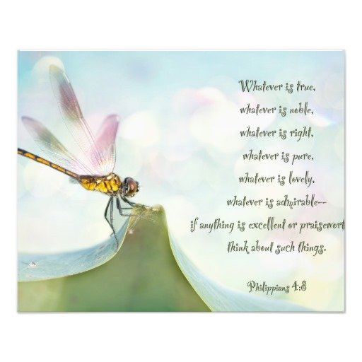 Pictures And Inspiration: Dragonfly Inspirational Quotes. QuotesGram