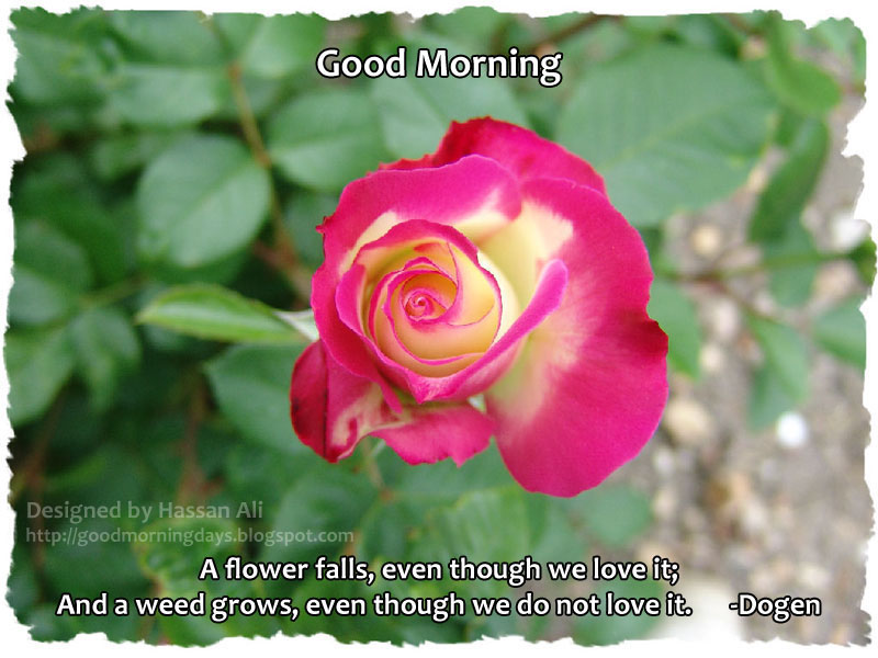 Good Afternoon Quotes For Him: Have A Good Day Quotes For Him. QuotesGram