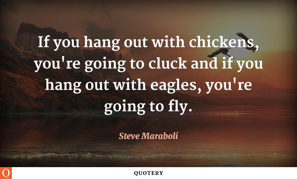 Chicken Sayings: Chickens Quotes. QuotesGram