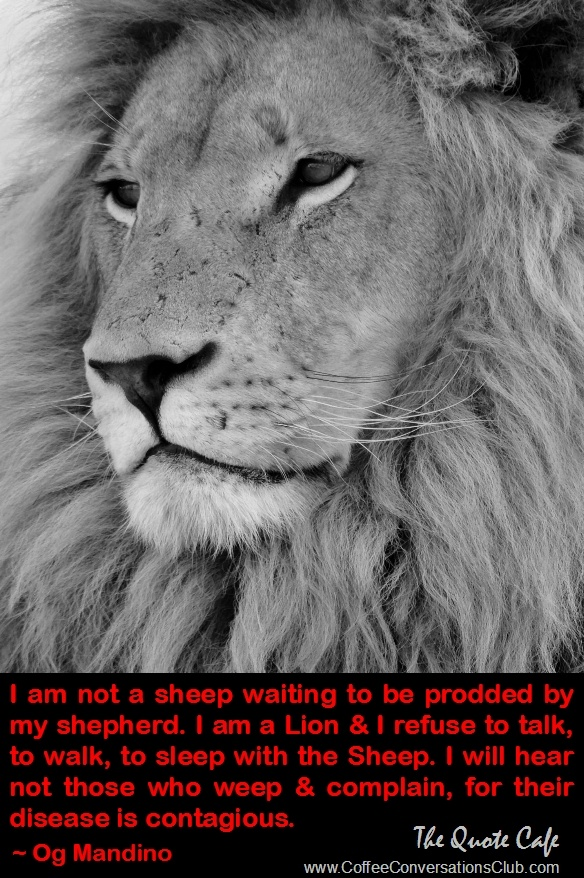 Lioness Quotes. QuotesGram