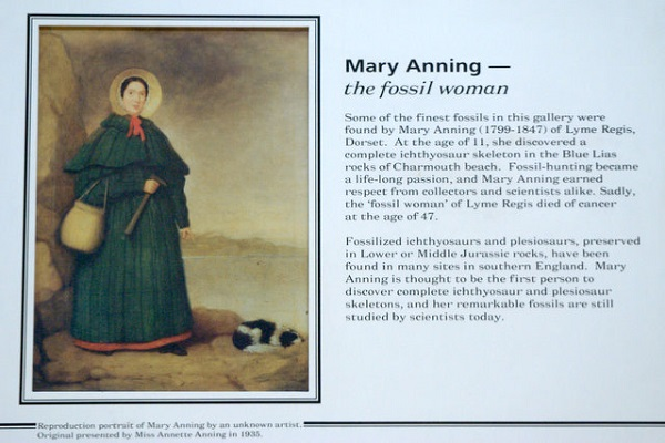 Mary Anning Quotes Quotesgram