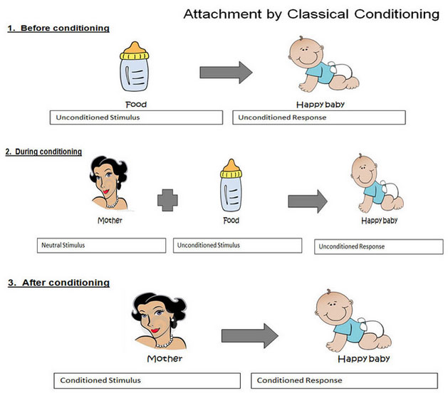 classical conditioning paper