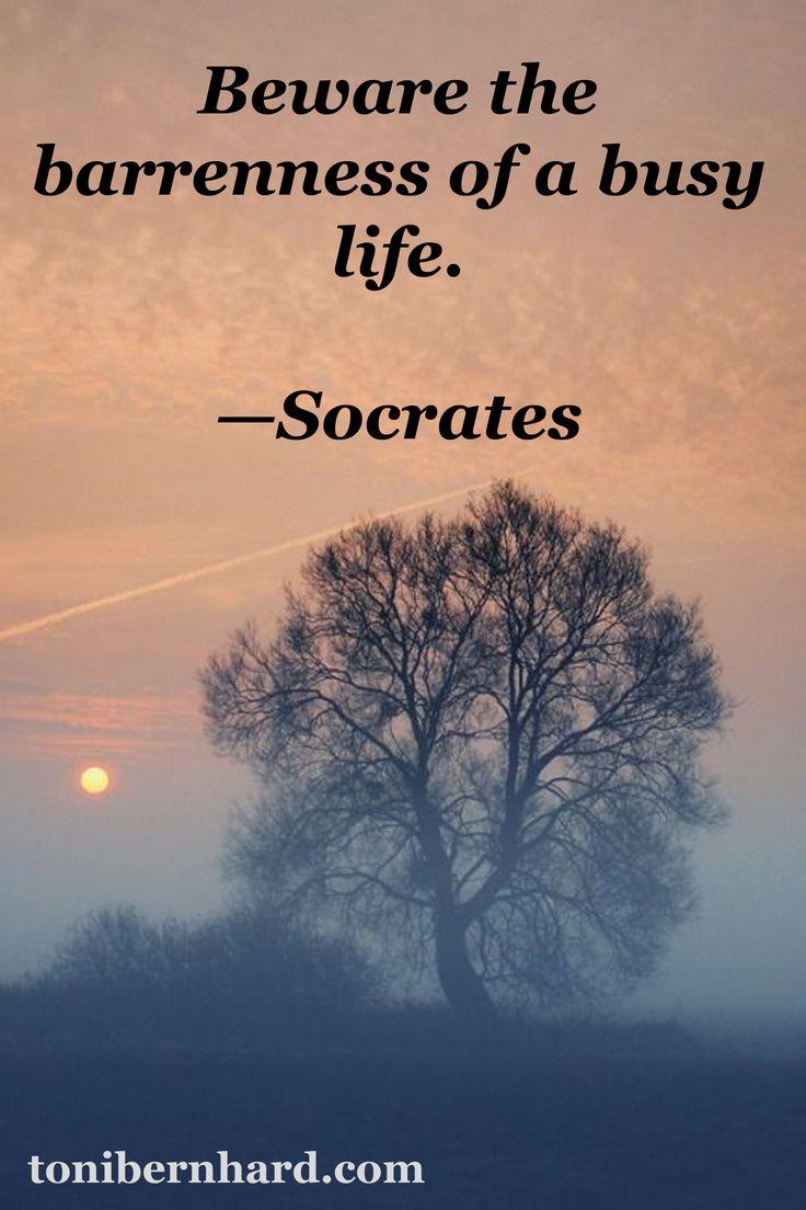 socrates quotes on leadership  quotesgram