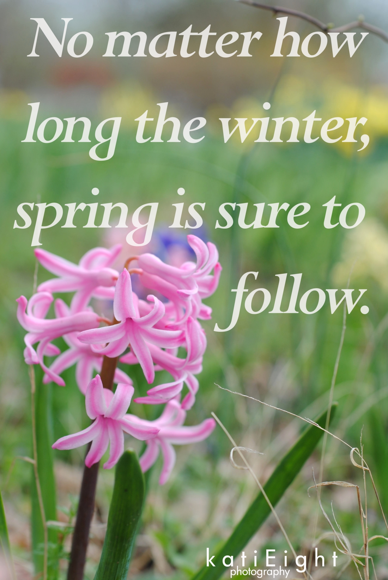 Winter To Spring Quotes Quotesgram